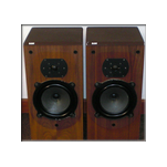 B&W DM22 Monitors